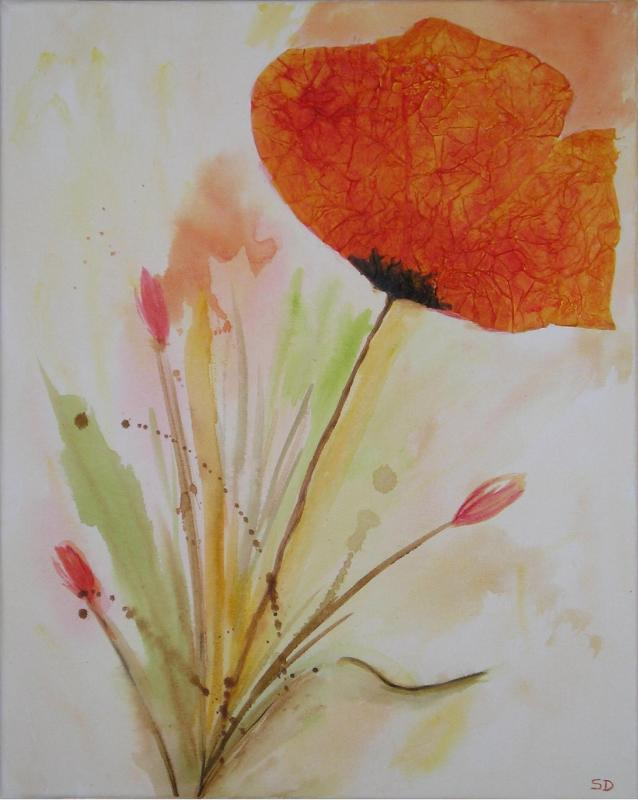 Fleur de coquelicot redim